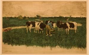 s51:cb Holsteins, Edam