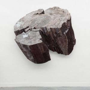 Holocene, 2013 (160x168x16cm), privé collectie Rotterdam